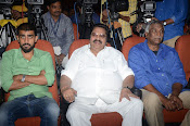 pelli chupulu movie success meet-thumbnail-12