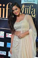 Prajna Actress in backless Cream Choli and transparent saree at IIFA Utsavam Awards 2017 0011.JPG