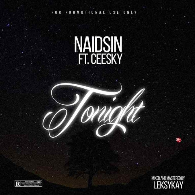 DOWNLOAD MP3: Naidsin Ft Ceesky – Tonight