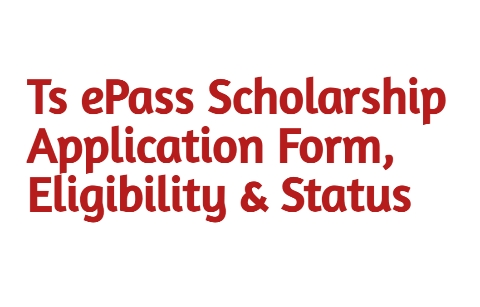 ePass Scholarship