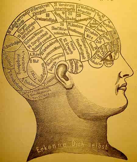 दिमाग तेज करने के घरेलू नुस्खे और उपाय – Dimag Tez kaise kare
