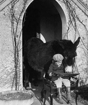 burro leyendo, niña