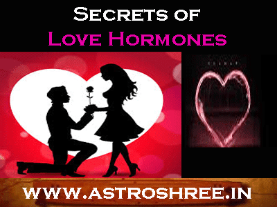 love life secret hormones