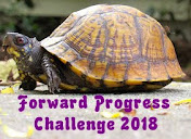 #forwardprogress2018