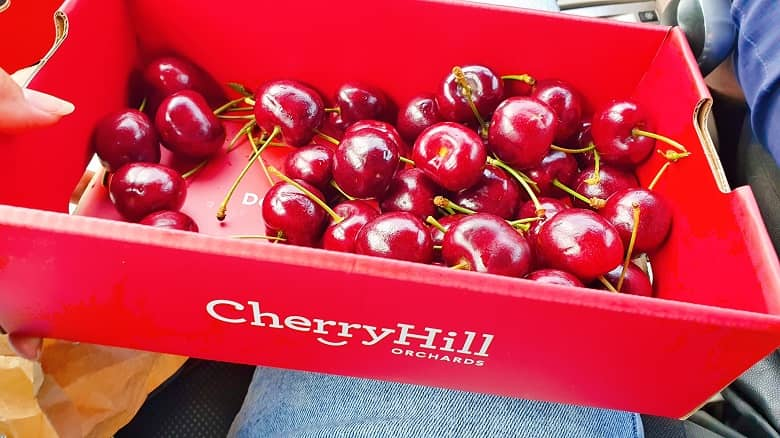 The Cherryhill Orchards, Wandin East Victoria