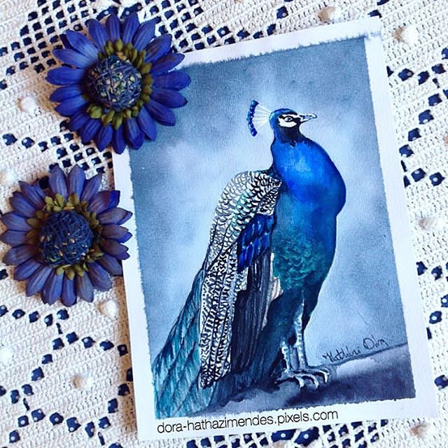 Majestic Peacock watercolor painting by Dora Hathazi Mendes