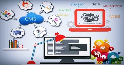 ما هو أفضل نظام إدارة محتوى يمكنك استخدامه؟