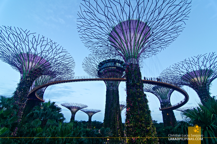 Singapore Travel Blog 3 Day Itinerary Expenses
