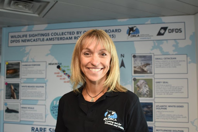 Michaela Strachan. From dolphins to whales to birds, you'll be amazed how many there are. And you can learn all about the wildlife that lives in the North Sea as you sail from Newcastle to Amsterdam on the DFDS KING Seaways ferry on a marine wildlife mini cruise.