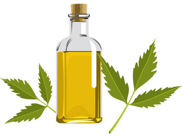 Top 10 Neem Oil Uses