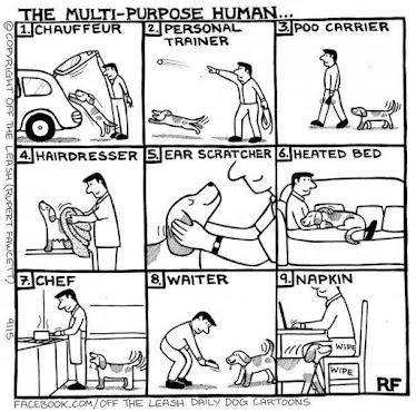 The Multi-Purpose Human...