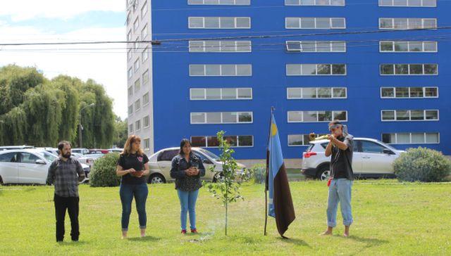 Más del 40% de estudiantes de ULagos declaran tener ascendencia mapuche
