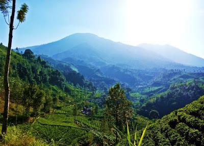 Pendakian Gunung Butak 2.868 mdpl via Sirah Kencong