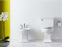 Cara Perawatan Dan Pembersihan Toilet & Bidet Vitreous