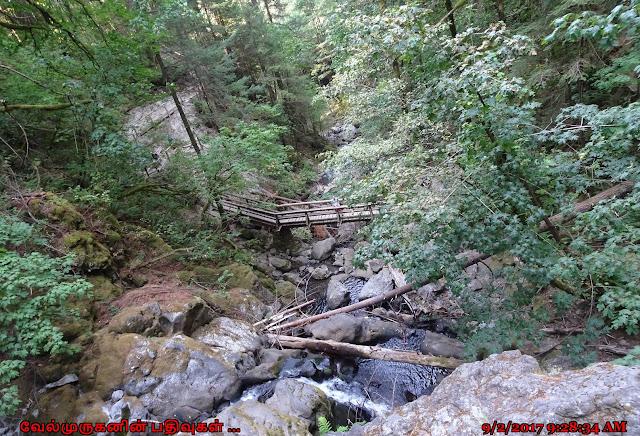Hardy Creek - Rodney Falls