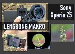kali ini aku ingin menceritakan pengalaman aku menggunakan lensbong makro Memotret Objek Makro Dengan Sony Xperia Z5 dan Lensbong Makro
