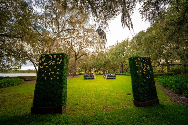 ceremony entrance with hedge walls