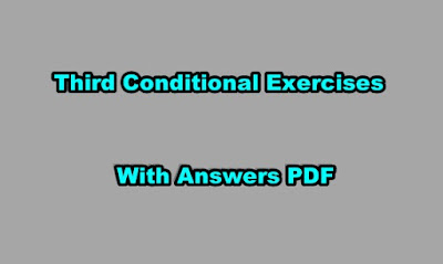 Third Conditional Exercises With Answers PDF