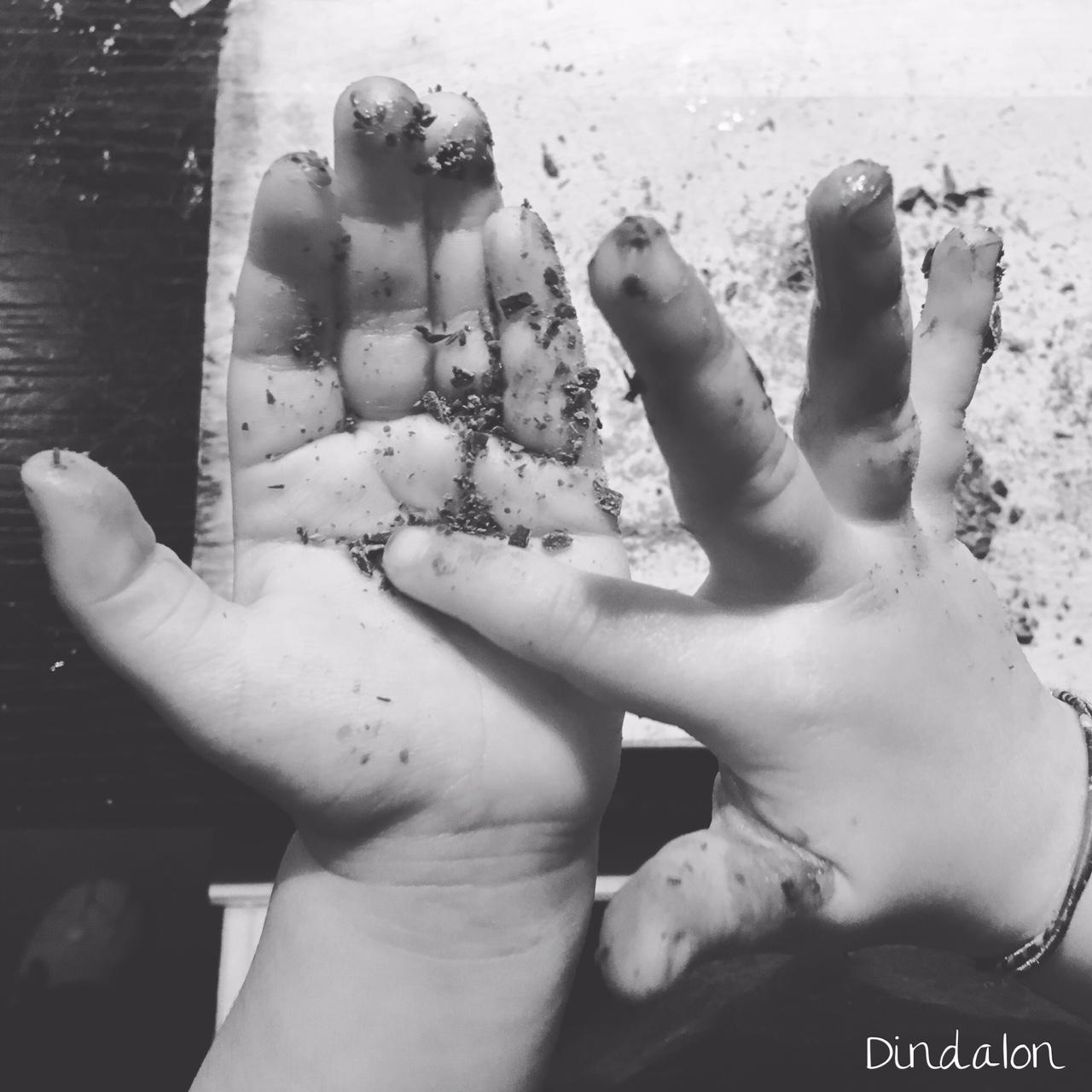 manine laboriose con scaglie di cioccolato