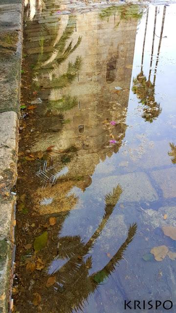 reflejo de la torre del oro de sevilla en un gran charco