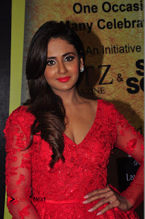 Actress Model Parul Yadav Stills in Red Long Dress at South Scope Lifestyle Awards 2016 Red Carpet  0083.JPG