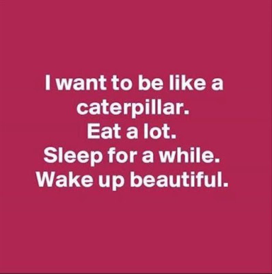 Funny Picture, Hilarious And Funny Sleeping Quotes, Cant Sleep Quotes Funny