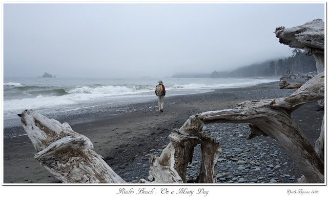 Rialto Beach: On a Misty Day
