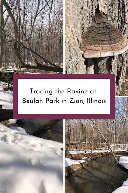 Tracing the Ravine at Beulah Park in Zion, Illinois