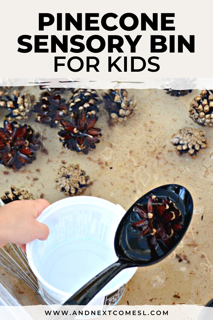 Looking for pinecone activities for kids? Try this cinnamon scented pinecone sensory bin that's perfect for toddlers and preschoolers!