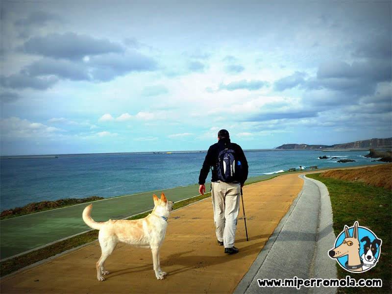 Can de Palleiro en el Sendero Azul de Sabón
