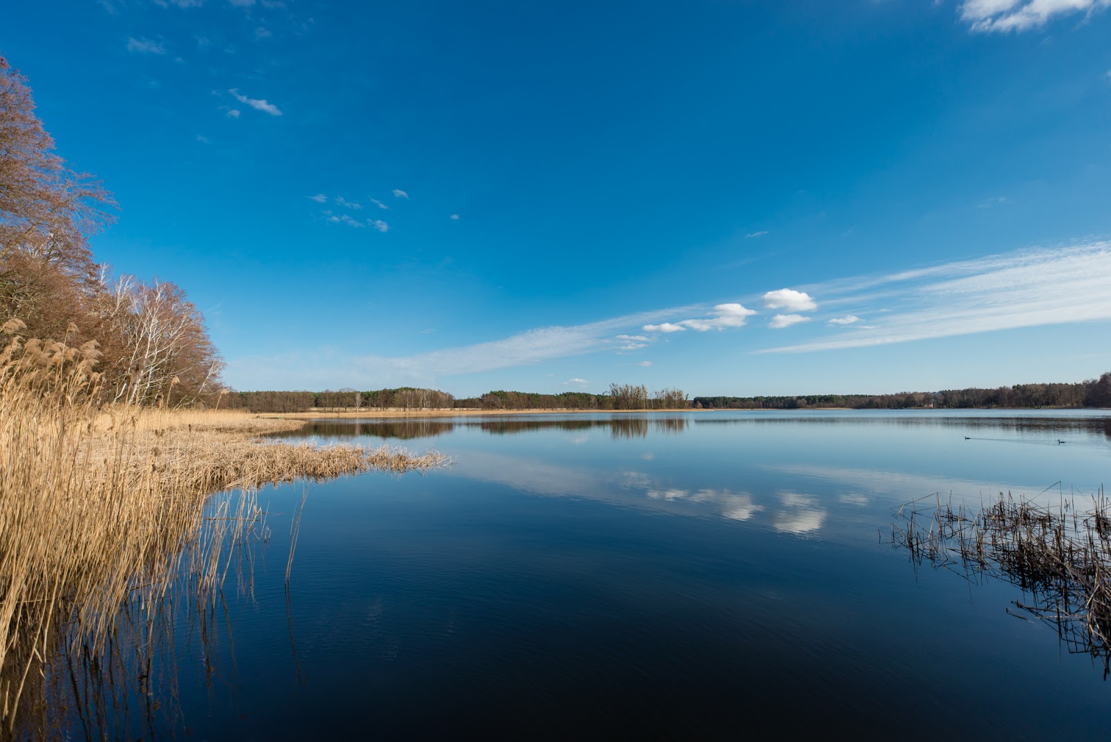 Jezioro Raczyńskie