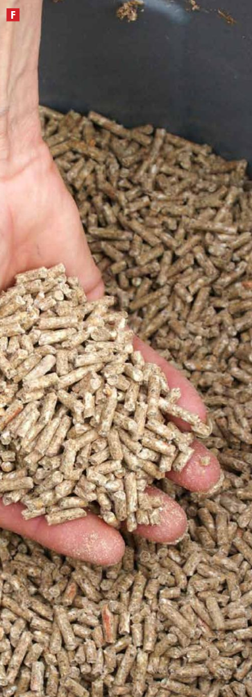 The Global Miller: Responsible feed ingredients documents