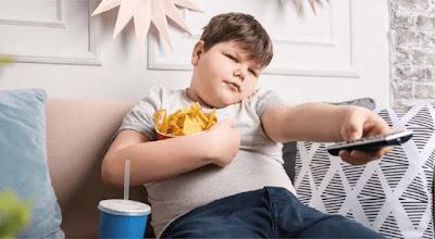 Causas obesidad niños