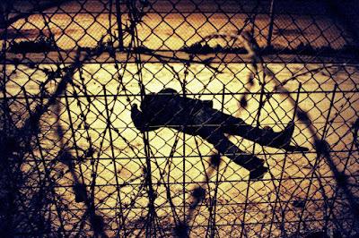 Migrante africano entre alambres en frontera España-Marruecos