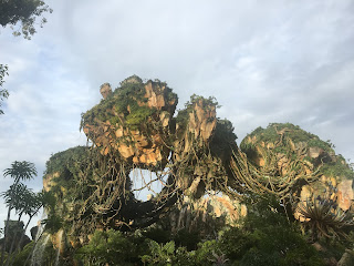 Pandora Floating Mountains Disney's Animal Kingdom