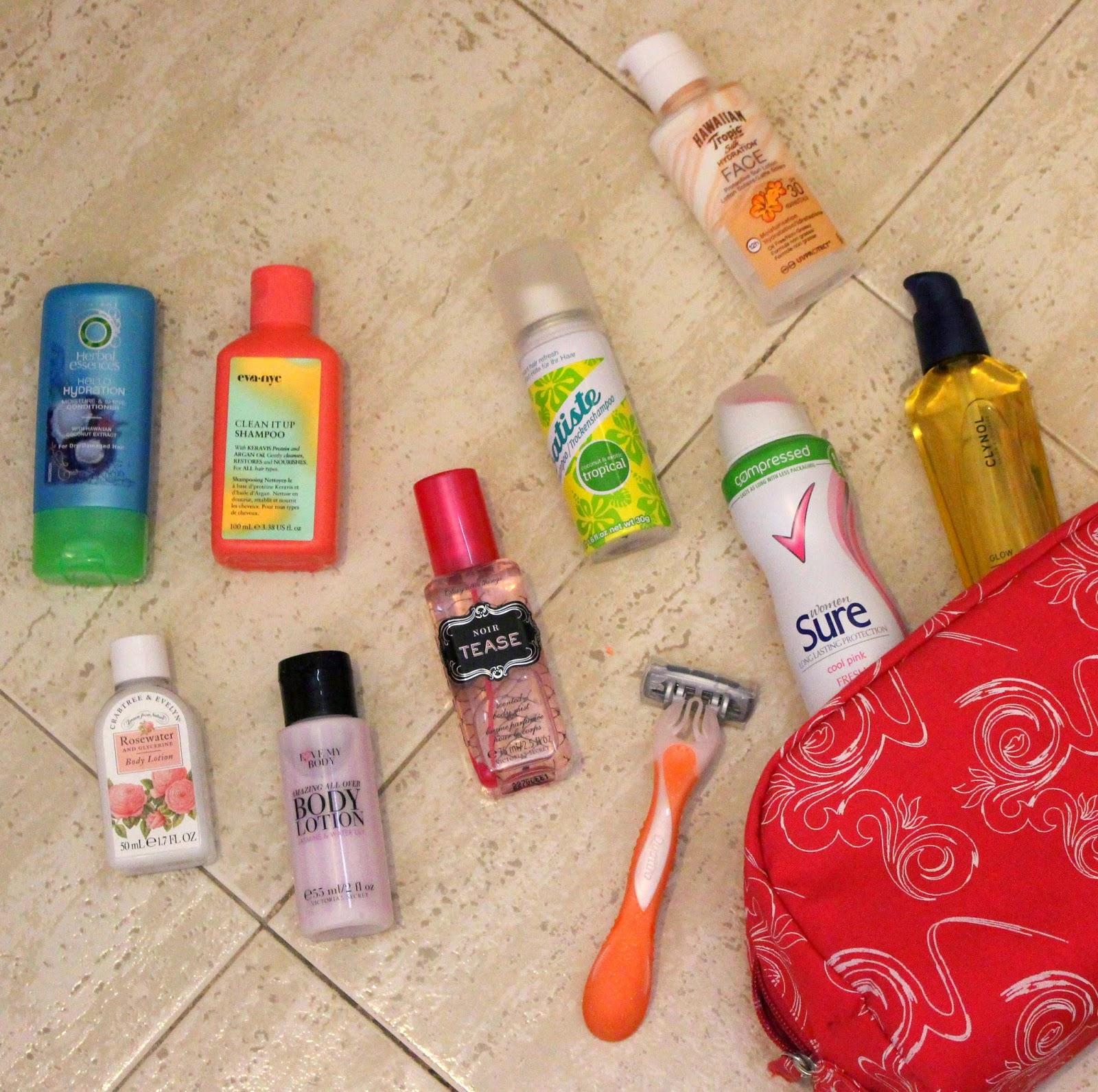 Travel Bag Mini's