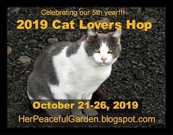 2019 Cat Lovers Hop