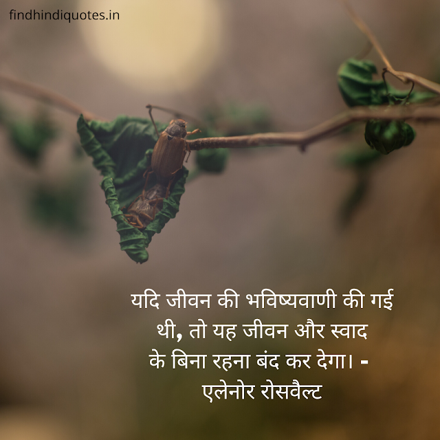 Best Quotes in Hindi | Motivational Quotes in Hindi