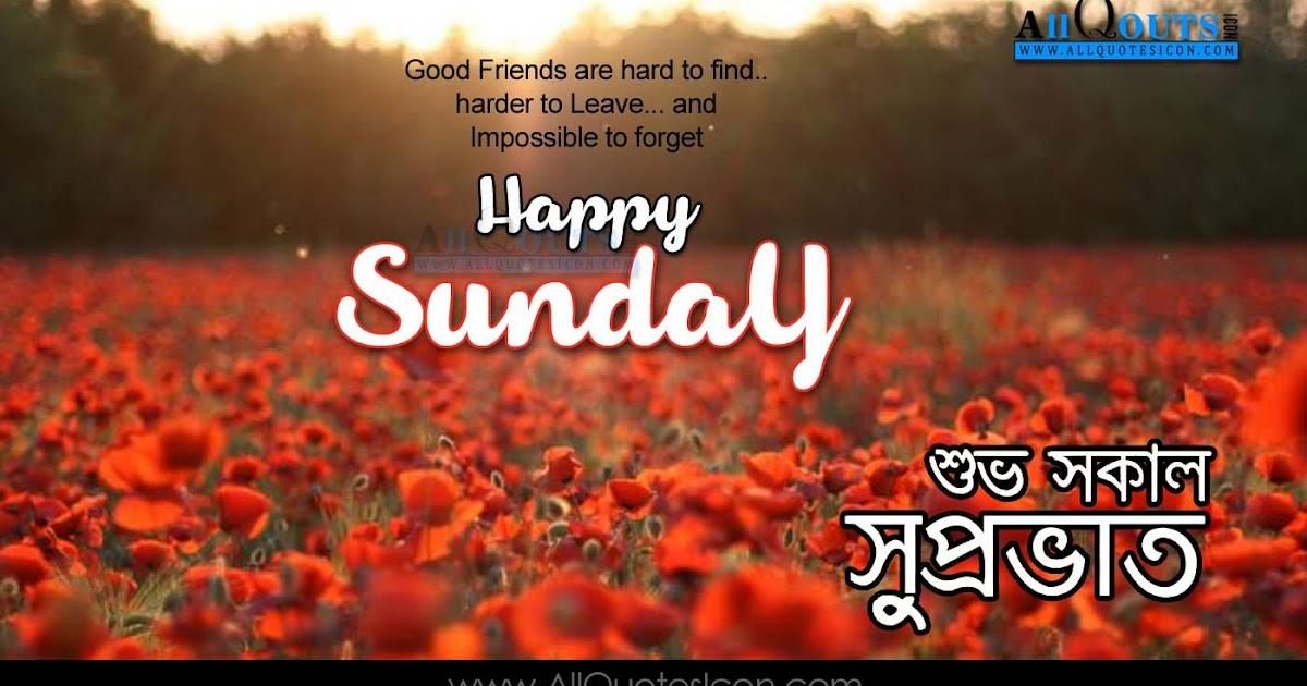 Good Morning Quotes Bengali : Happy sunday images best bengali good morning quotes