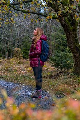 Herbstwanderung im Harz | Torfhaus – Eckerstausee – Bad Harzburg 03