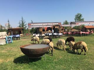 altınköy yemek yerleri seyir teras konağı altındağ altınköy açık hava müzesi karapürçek kahvaltı