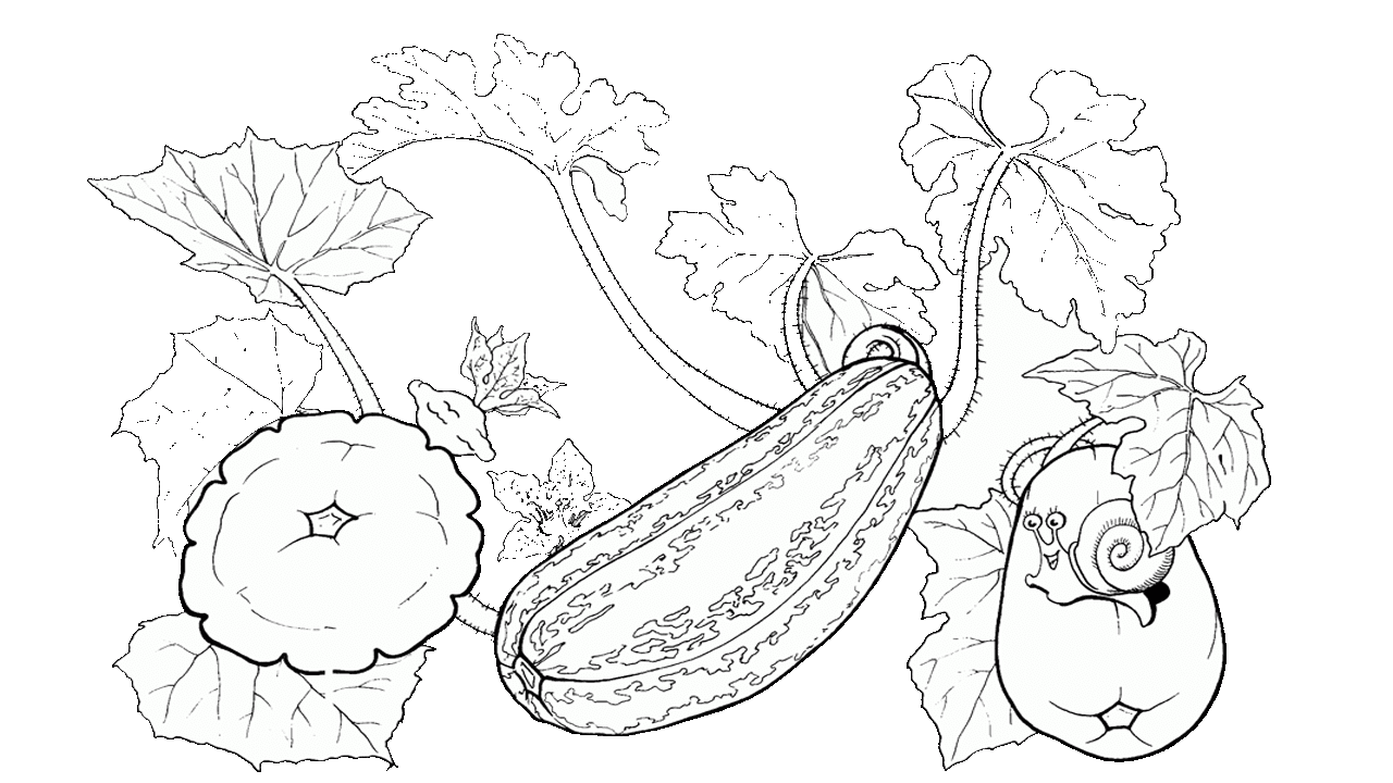 14 cool cucumber free vegetables clipart
