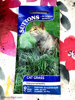 ©BionicBasil® Gardening with Cats - How to Grow Cat Grass