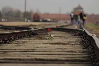 Auschwitz rotaie treno