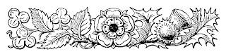 border digital floral flowers image design illustration botanical art