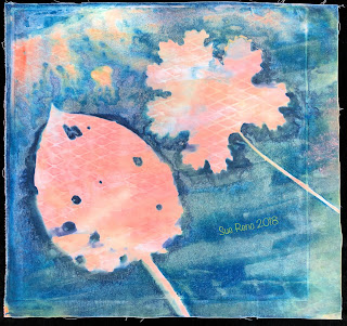 Wet cyanotype -Sue Reno_Image 511