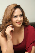 nikisha patel new sizzling photos gallery-thumbnail-13