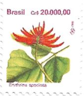 Selo Flor da corticeira
