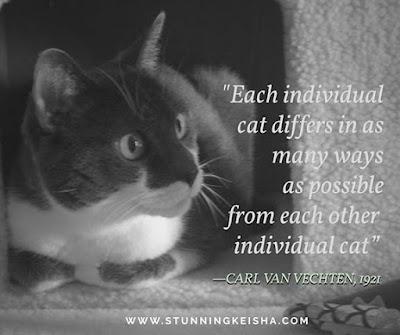 Wednesday Wisdom Quotable Quotes