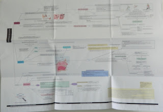 Upper Respiratory Tract Infections Concept Map Folded Poster